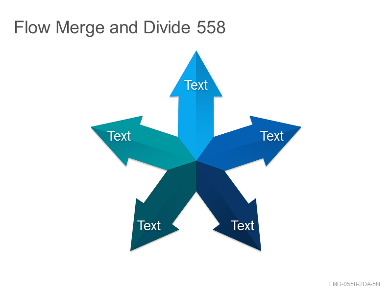Flow Merge and Divide 558