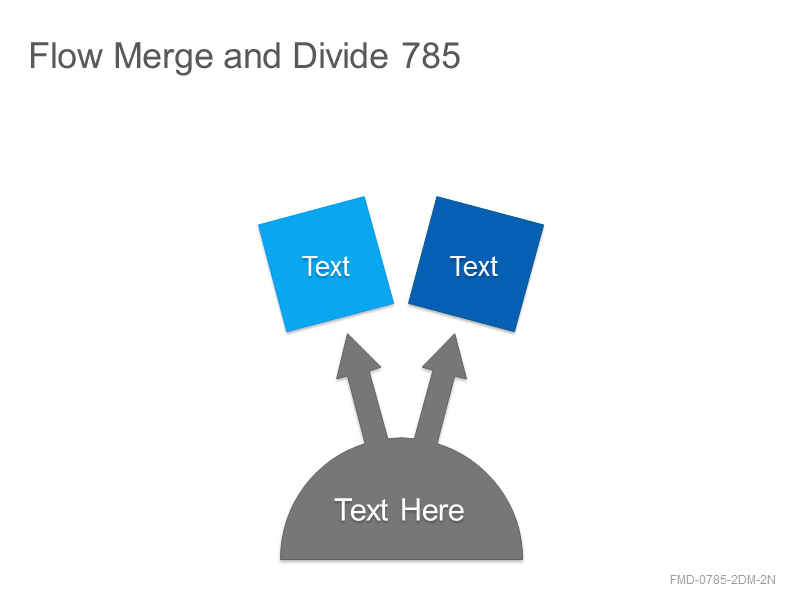 Flow Merge and Divide 785