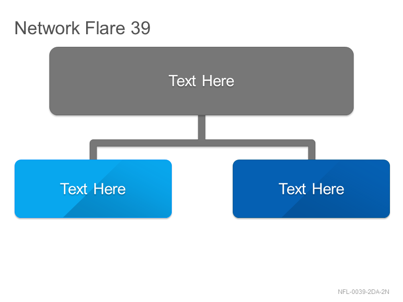Network Flare 39