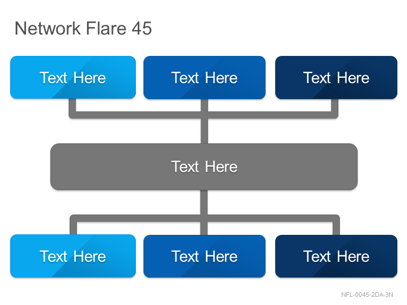 Network Flare 45