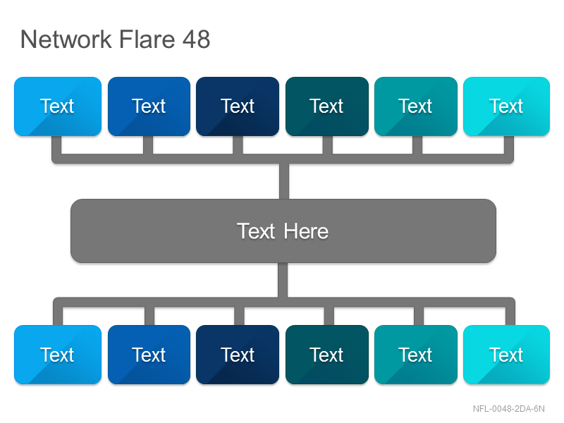 Network Flare 48