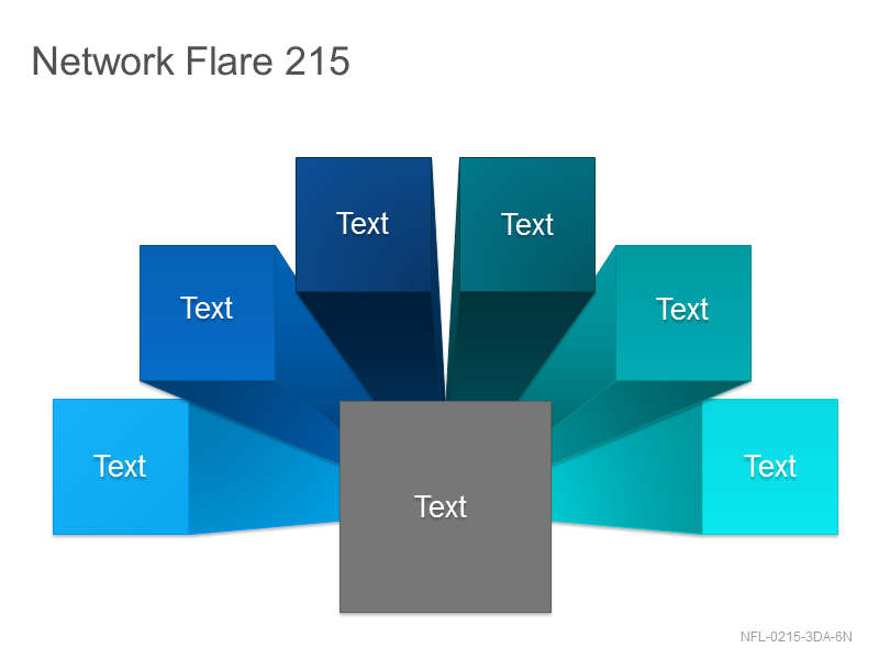 Network Flare 215