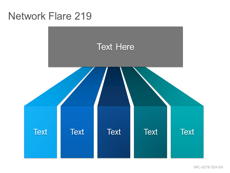 Network Flare 219