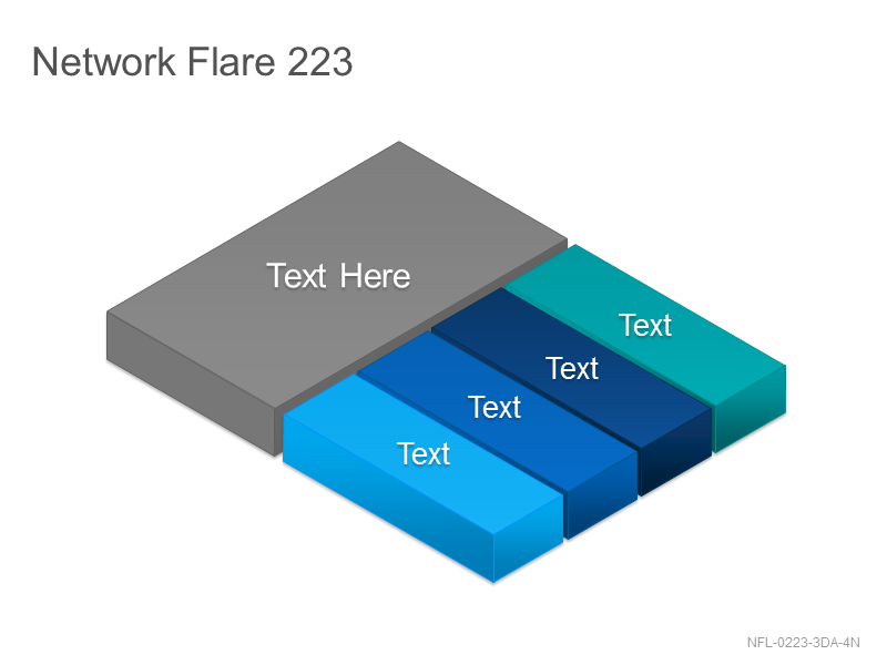 Network Flare 223