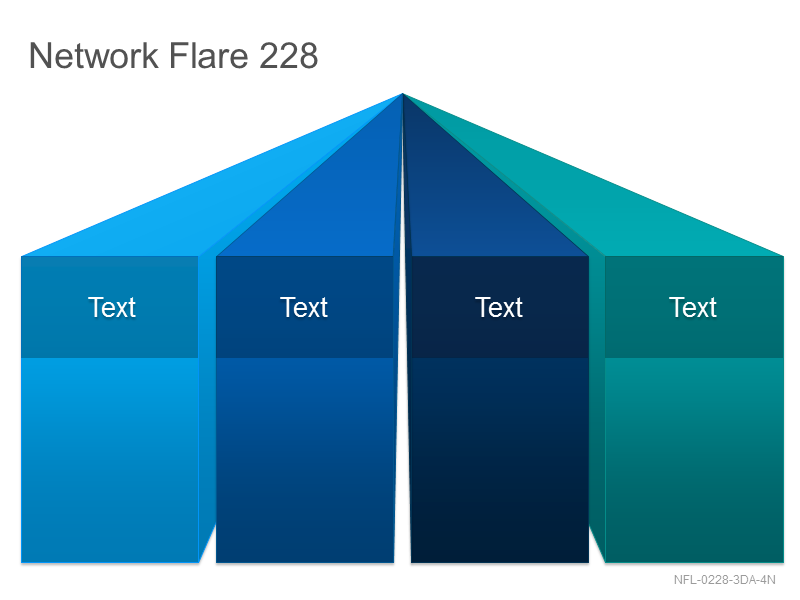 Network Flare 228