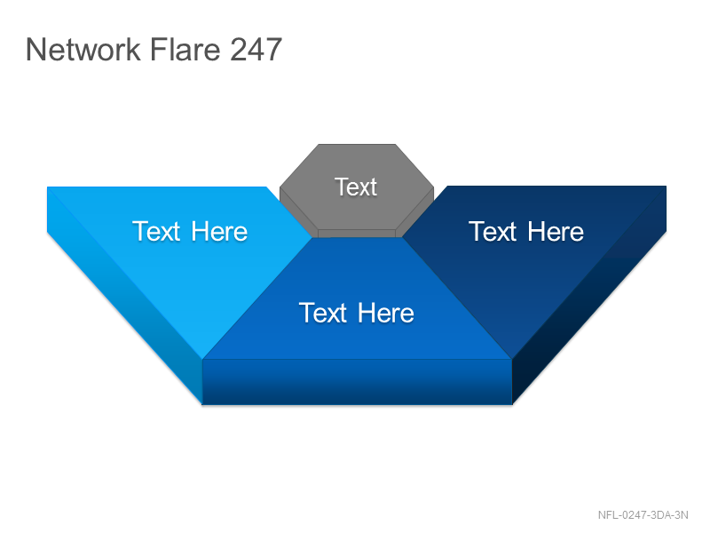 Network Flare 247