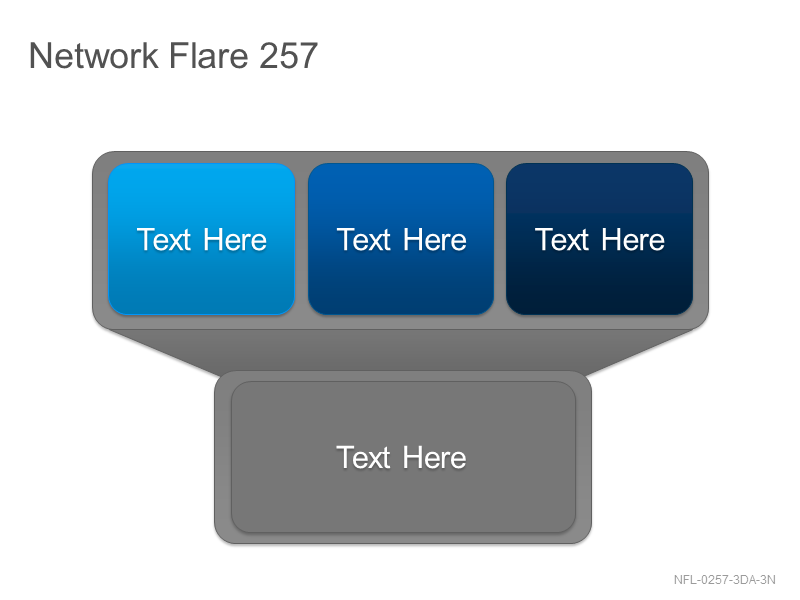 Network Flare 257