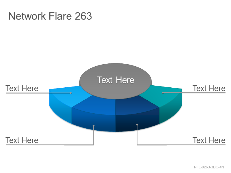 Network Flare 263