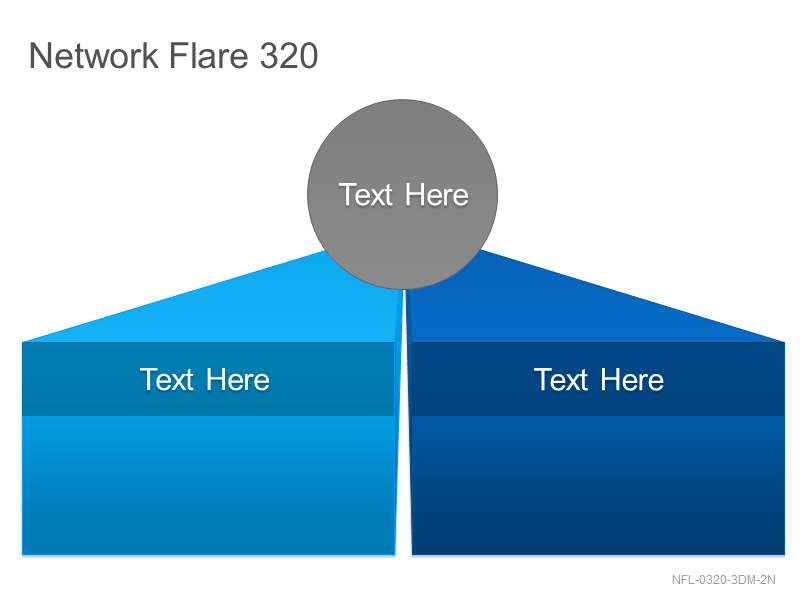 Network Flare 320