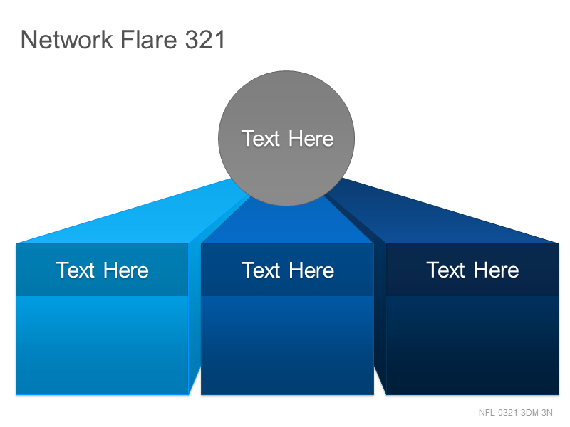 Network Flare 321