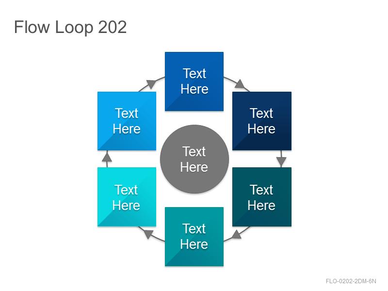 Flow Loop 202