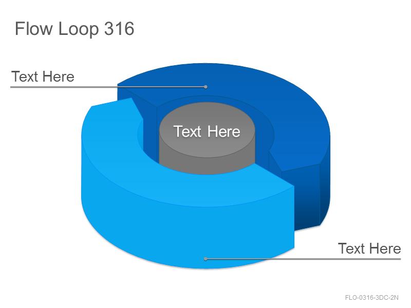Flow Loop 316