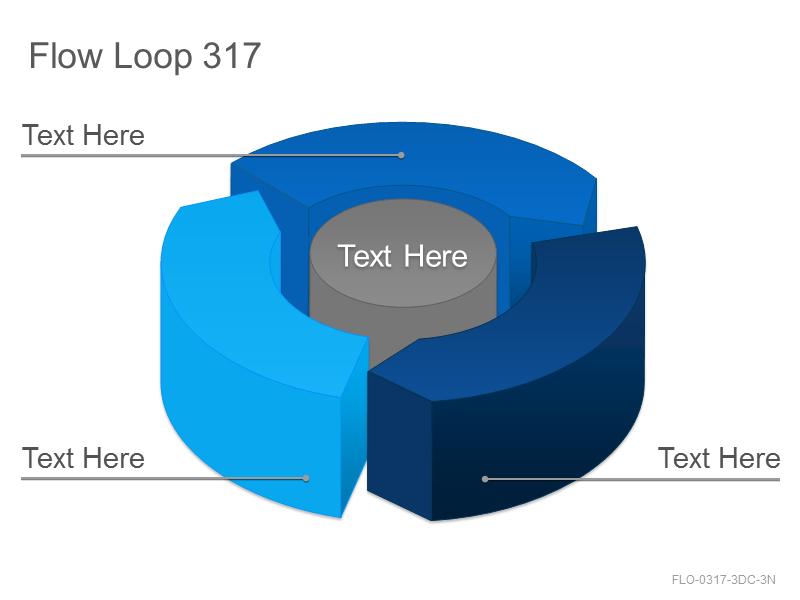 Flow Loop 317
