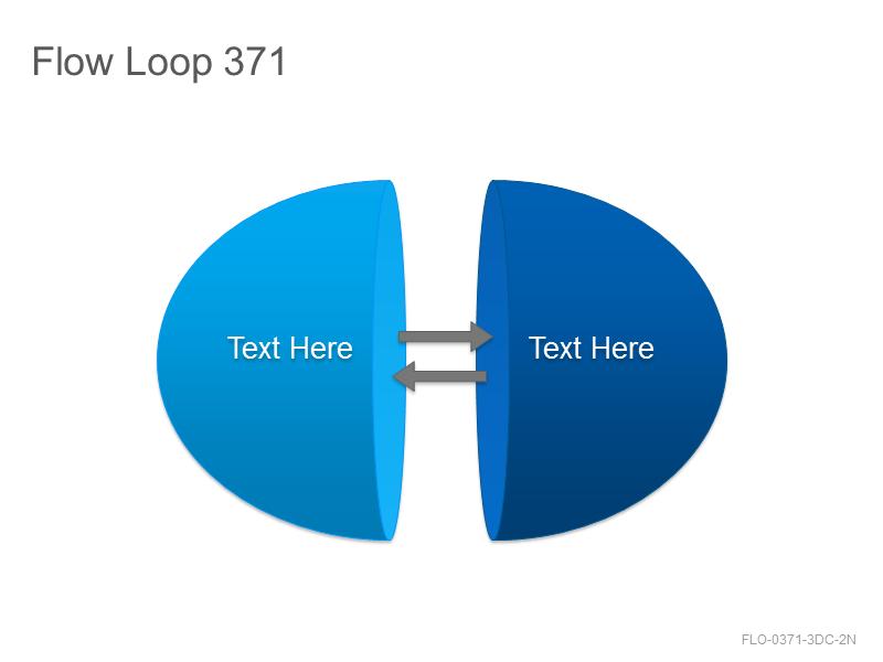 Flow Loop 371