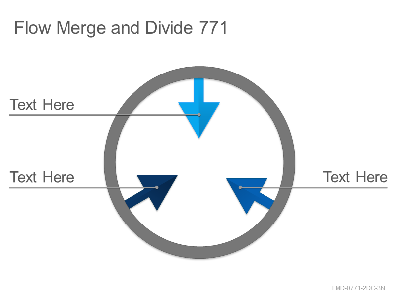 Flow Merge and Divide 771