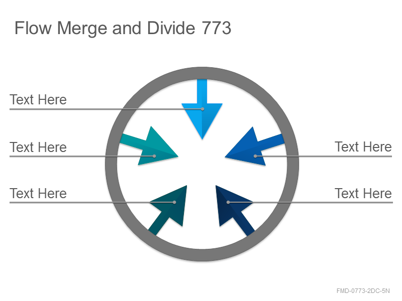 Flow Merge and Divide 773