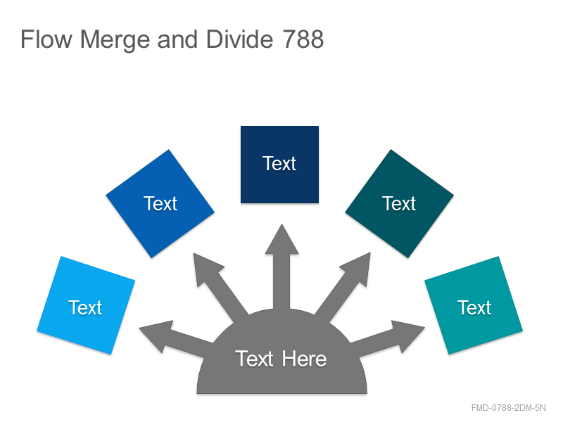 Flow Merge and Divide 788