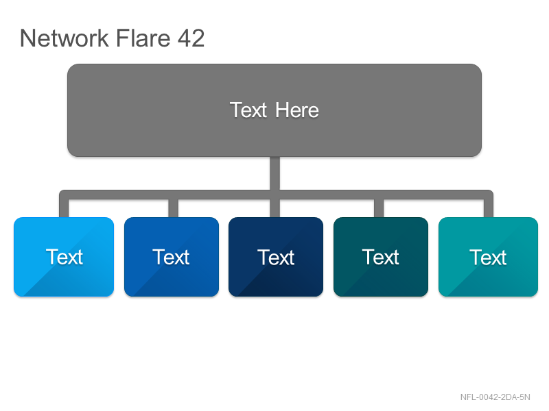 Network Flare 42