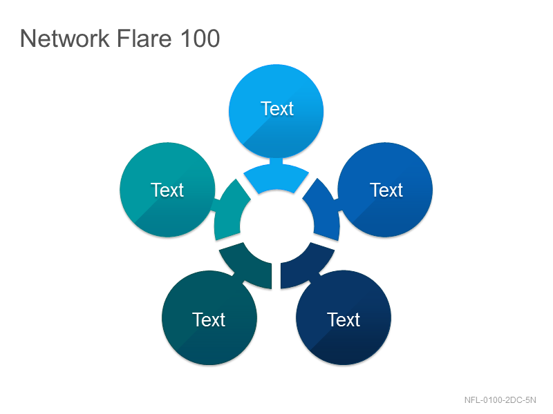 Network Flare 100