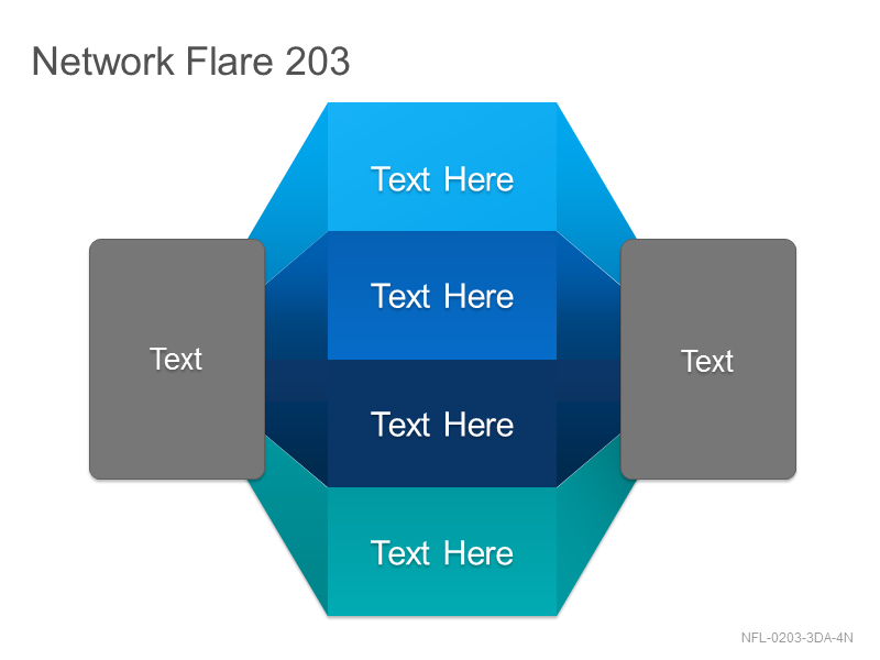 Network Flare 203