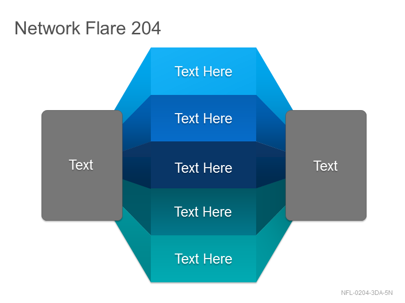 Network Flare 204