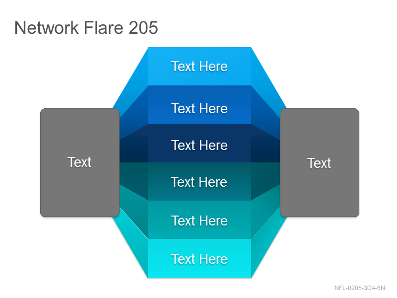 Network Flare 205
