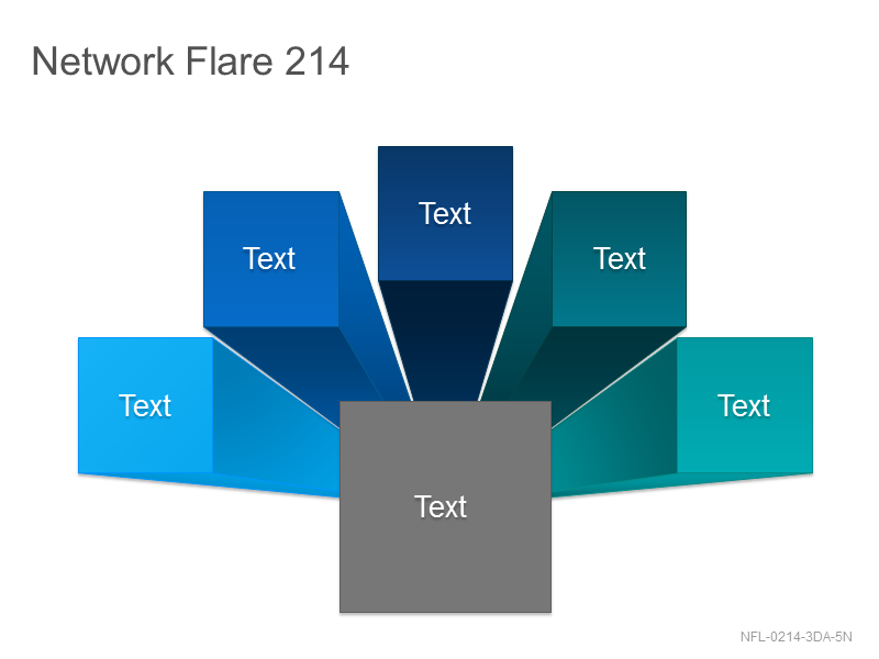 Network Flare 214
