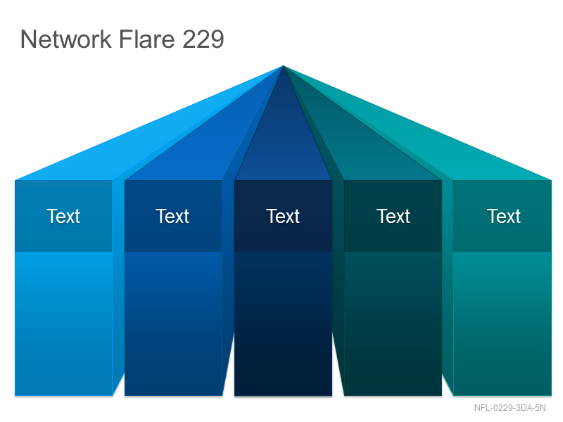 Network Flare 229