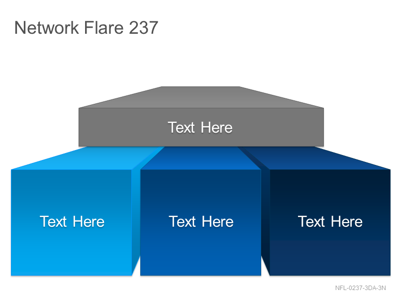 Network Flare 237