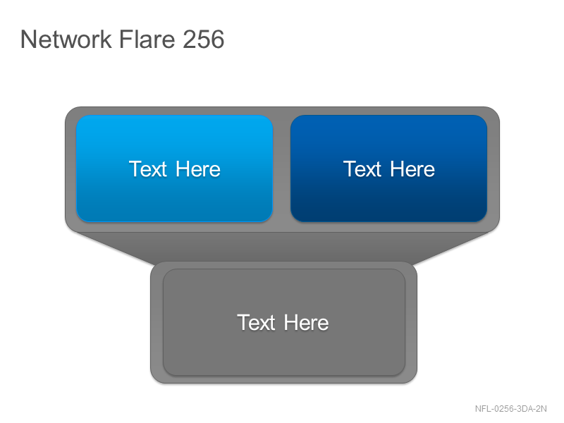 Network Flare 256