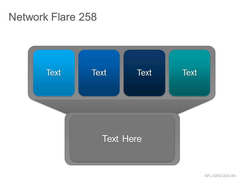Network Flare 258