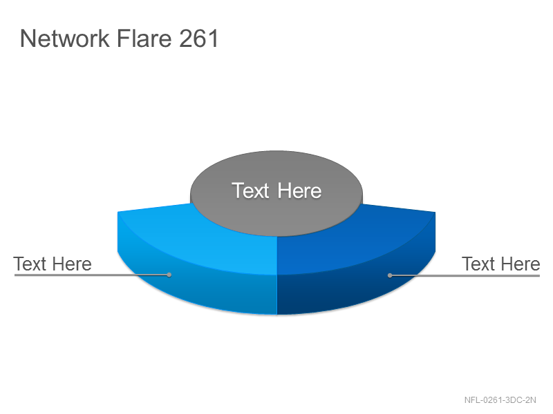 Network Flare 261