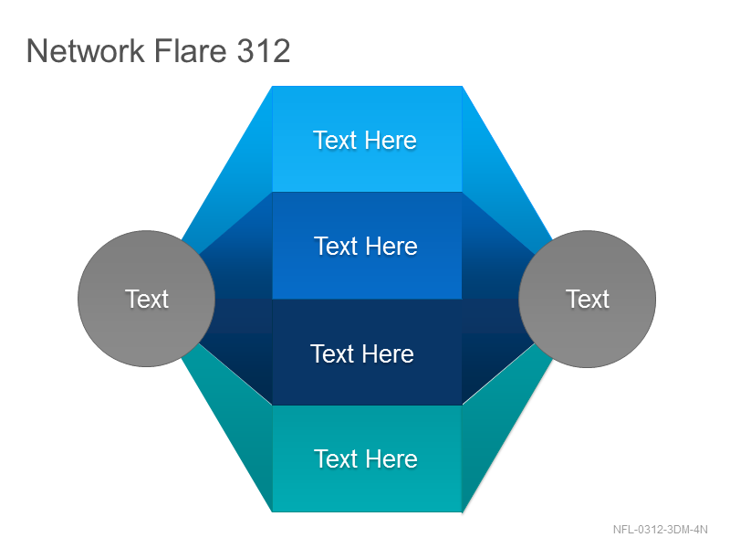 Network Flare 312