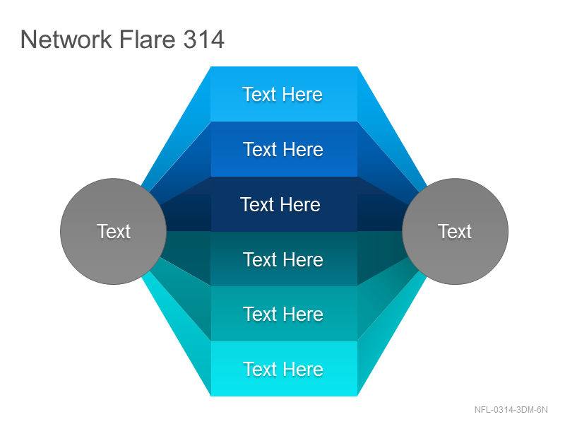 Network Flare 314