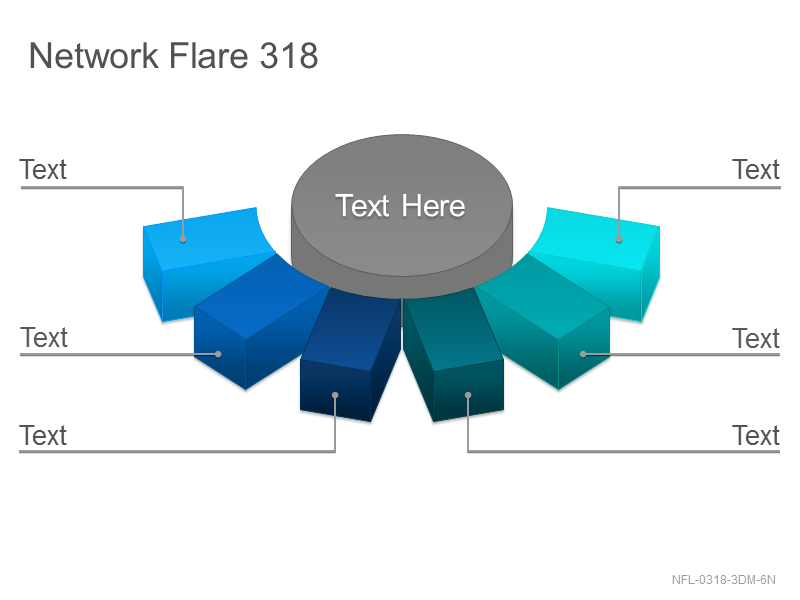 Network Flare 318
