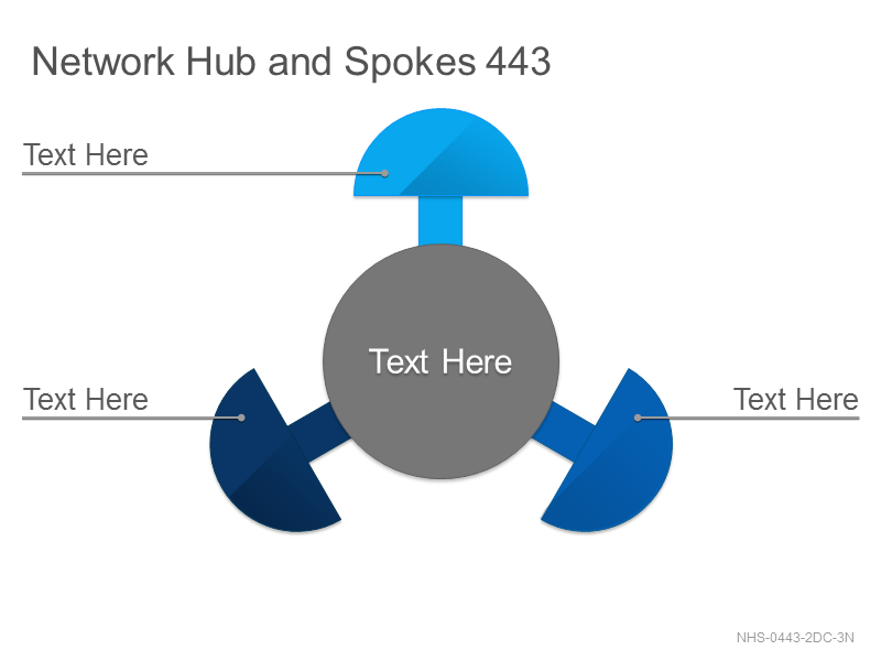 Network Hub & Spokes 443