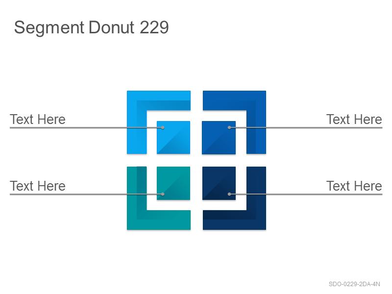 Segment Donut 229