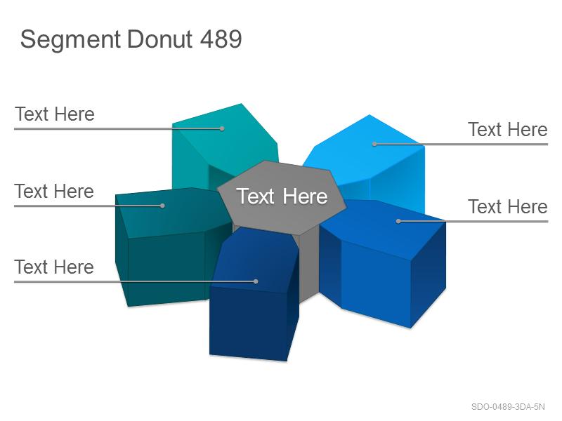 Segment Donut 489