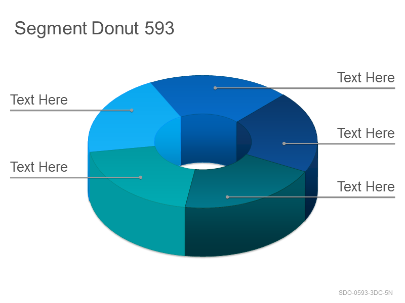 Segment Donut 593